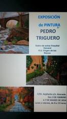 Exposición Pedro